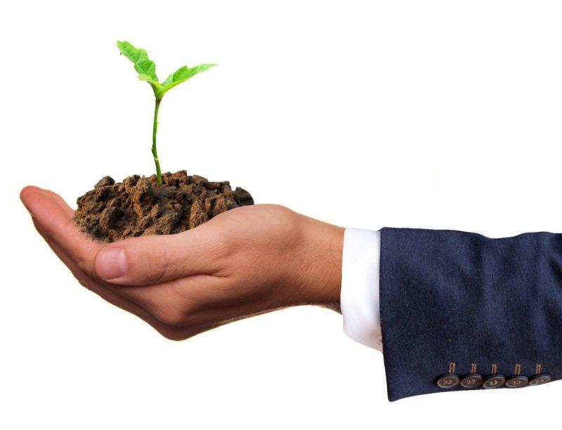 renouvellement du capital naturel