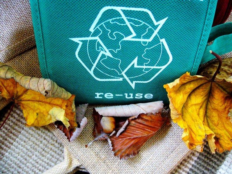 recyclage entreprise developpement durable