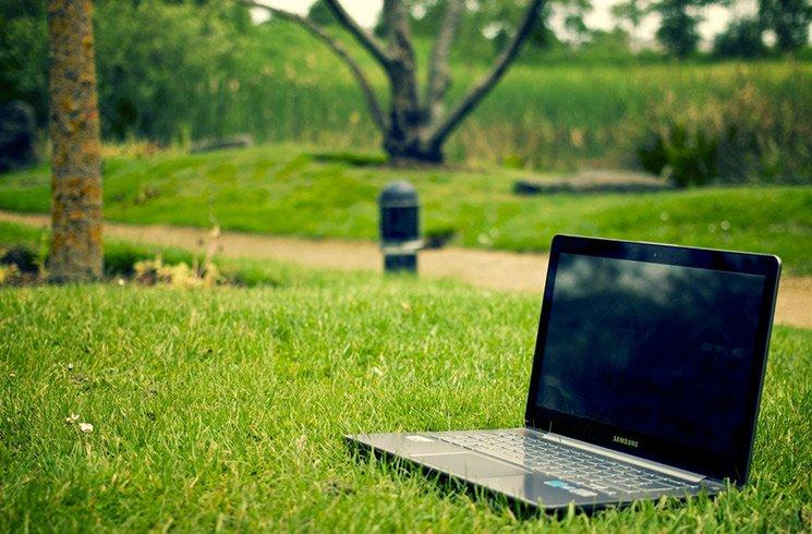 Jardin d'entreprise, projets environnementaux... quand l'écologie contribue à diminuer le mal-être au travail.