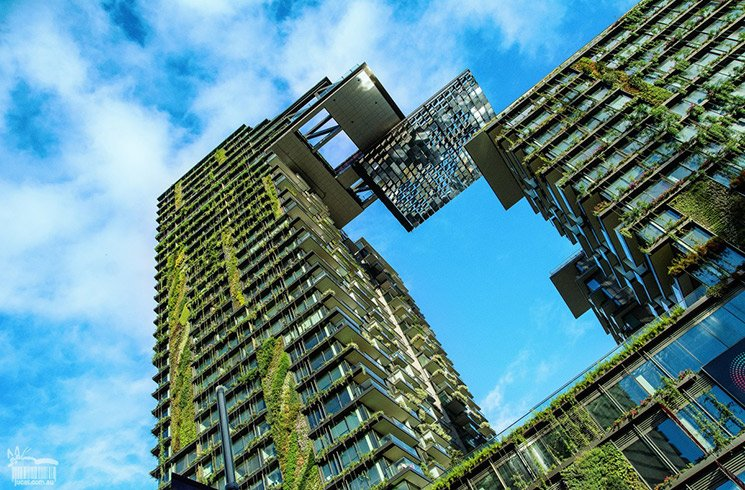 Entreprises : pourquoi s'associer à des projets environnementaux ?