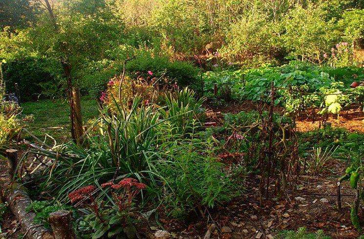 La permaculture, un moyen de rendre votre jardin heureux.