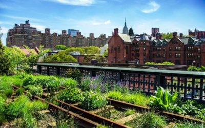 A quoi sert la permaculture ?