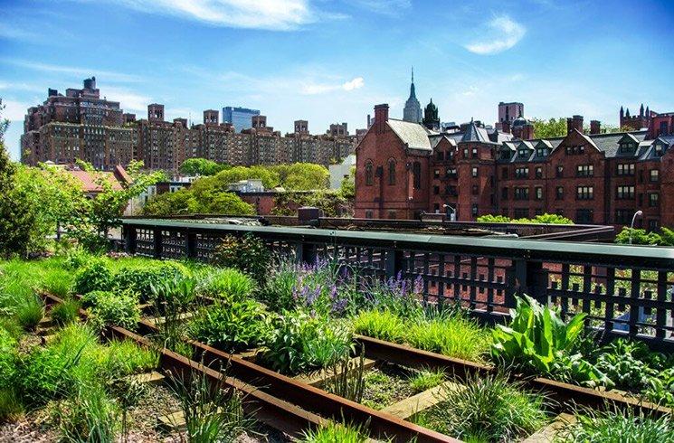 Cultiver durablement en ville grâce à la permaculture